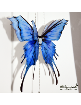 Tuquoya Fairy Butterfly