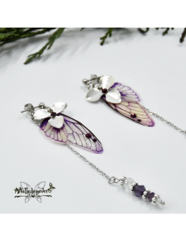 Orchidea Fairy