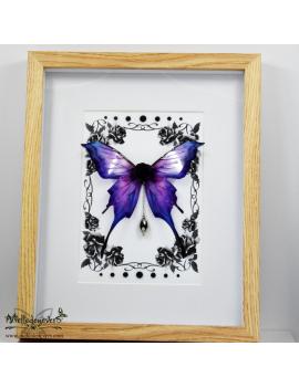 Papillon Féerique Amilia