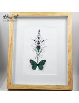 Papillon des Forêts
