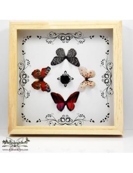 Quatuor de Papillons