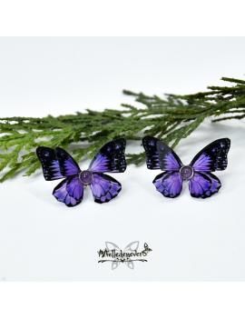 Papillon Endera