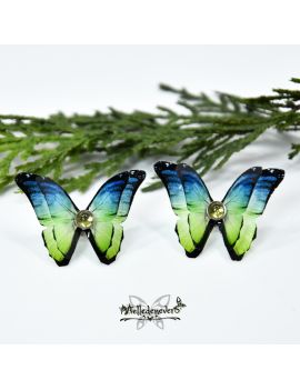 Fanila Butterfly