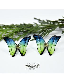 Papillon Fanila
