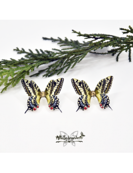Machaon Butterfly