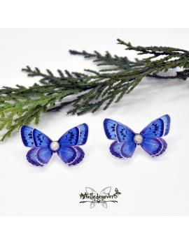 Maculinea Butterfly